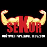 sekur.com.pl