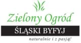slaskibyfyj.pl