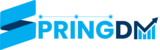 springdm.com