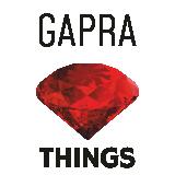 gapra.pl